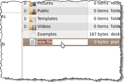 New file ready to be renamed