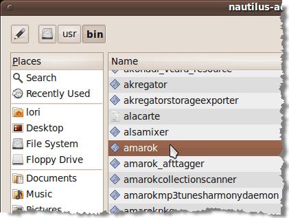 Selecting Amarok program