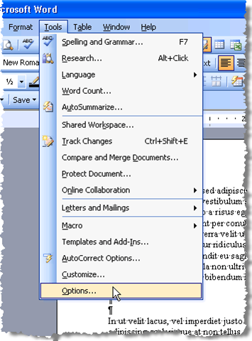 Use Spike to Cut and Paste Multiple Text Items in Word