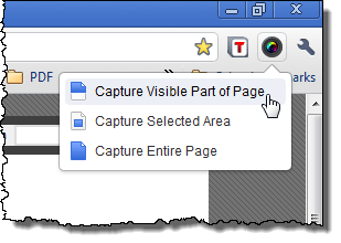 Selecting Capture Visible Part of Page