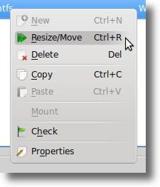 Resize / Move Option