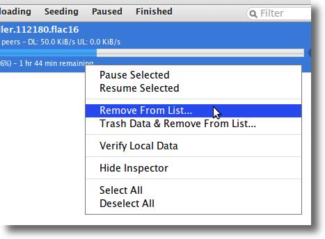 Web Interface Torrent Options