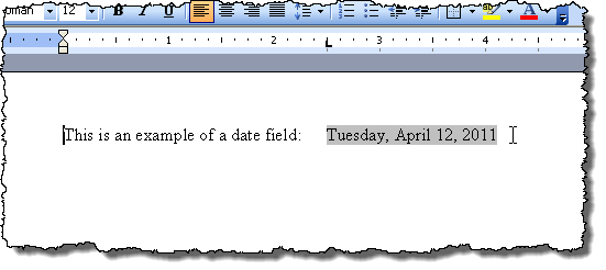 Example of field shading in Word 2003