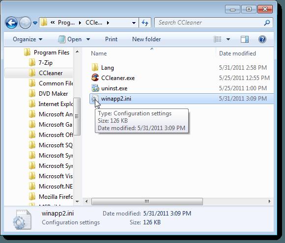 winapp2.ini file