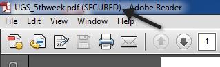secured pdf